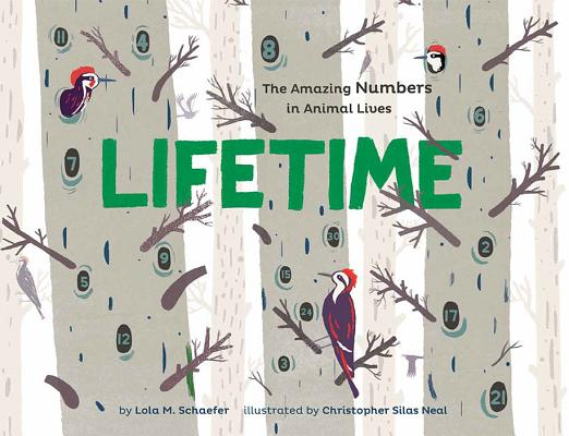 Lifetime By Schaefer, Lola M./ Neal, Christopher Silas (ILT)